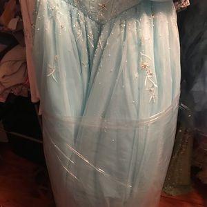 Tiffany Designs Dresses - Cinderella Style Ball Gown Pom Dress